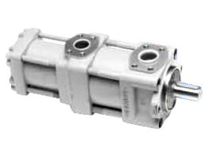 QT6222-100-6.3F QT Series Double Gear Pump