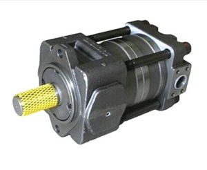 QT62-125L-A QT Series Gear Pump