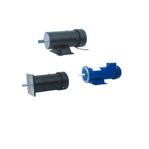 113ZYT Series Electric DC Motor
