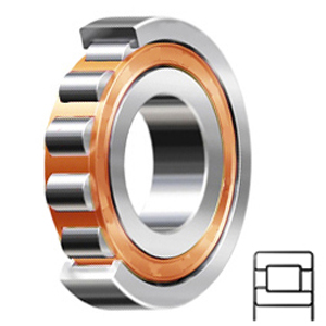 FAG BEARING NJ317-E-TVP2-C4