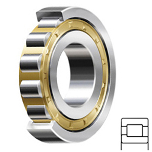 FAG BEARING NJ317-E-M1-C4