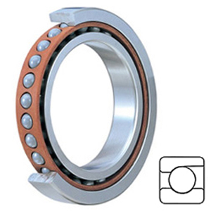 SKF 7009 ACDGC/P4A