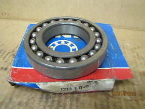 SKF Roller Ball Bearing 1213 ETN9 1213ETN9 New